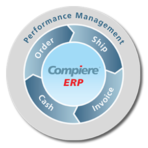 Access your ERP software online