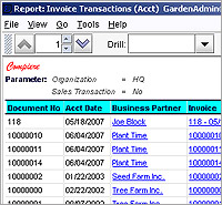 ERP software demo - Invoice Report Customized